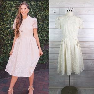 Gal Meets Glam Off White Lace Flare Dress 10 New